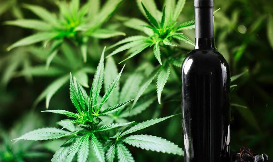 Чем заедать вино из марихуаны?
