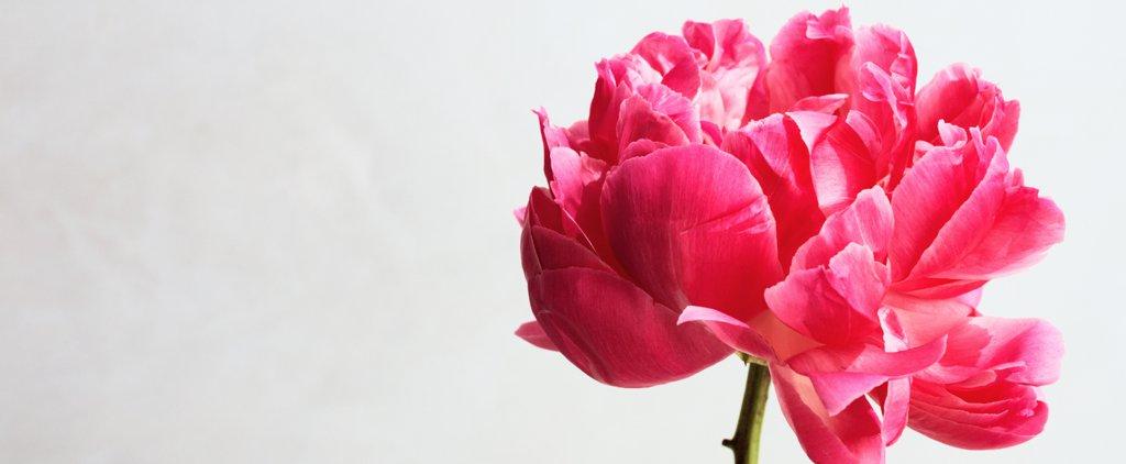 «Аэроэкспресс» поздравляет женщин с 8 Марта