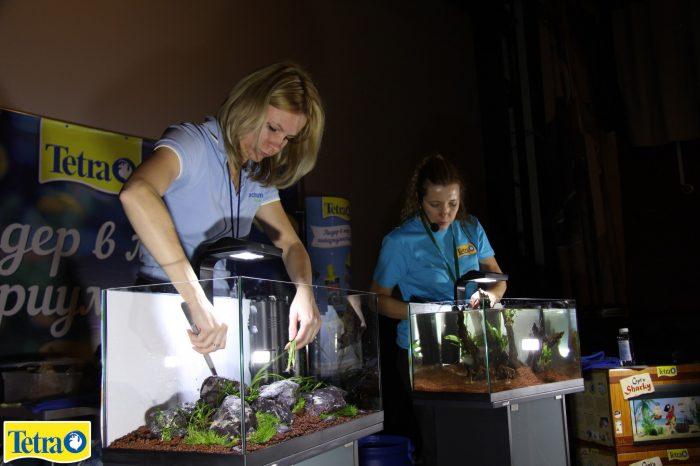 Учащиеся школ сдачи «ЕГЭ по аквариумистике»