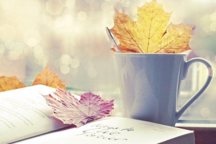 Топ-8: Что читать этой осенью?